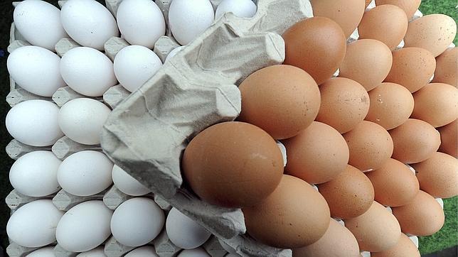 Huevos, magdalenas, pasta, miel y otros alimentos que, como el yogur, no caducan