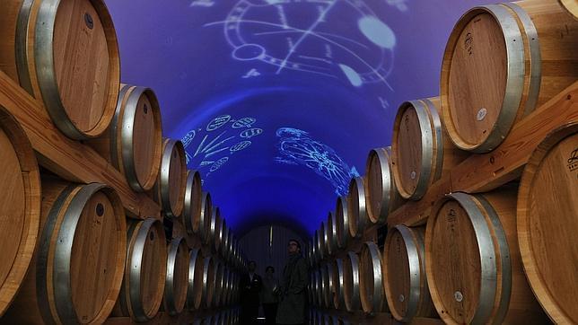 Un grupo de eurodiputados piden que el vino se declare patrimonio de la humanidad