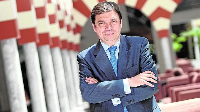 Luis Planas: «No tengo a mi favor el aparato socialista, pero trataré de ganar»