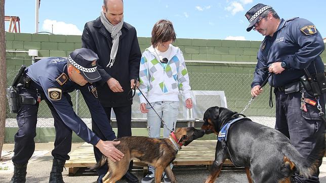 Un perro policía ayuda a superar el pánico a la víctima de un rottweiler