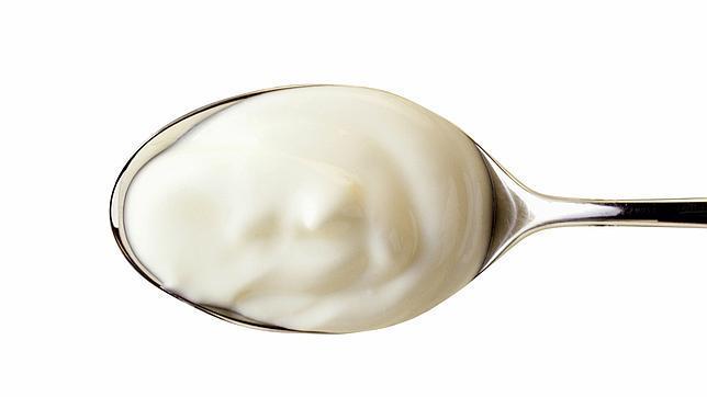 El yogur es leche fermentada mediante la acción de «Lactobacillus bulgaricus» y «Streptococcus thermophilus»