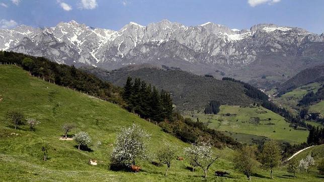 Vista del Parque Natural de Picos de Europa desde Liébana (Cantabria).