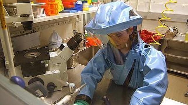 Los protocolos de seguridad para vacunas llevan años pero se acortarán en algunos casos dada la gravedad de la situación