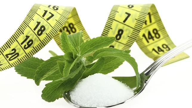 efectos secundarios de la stevia diabetes