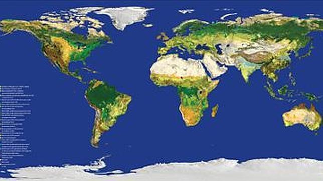 El mapa más preciso de la Tierra, en internet