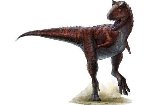 Carnotauro, el depredador veloz