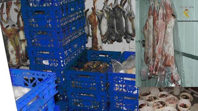 Desmantelan un matadero ilegal de carne en una vivienda