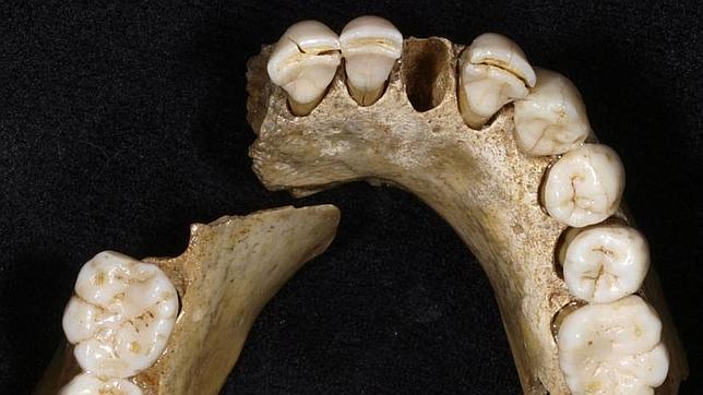 Neandertales al filo de la extinción