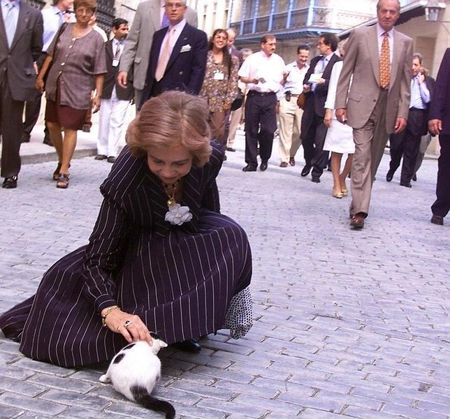 La Reina, los abogados y los derechos de los animales