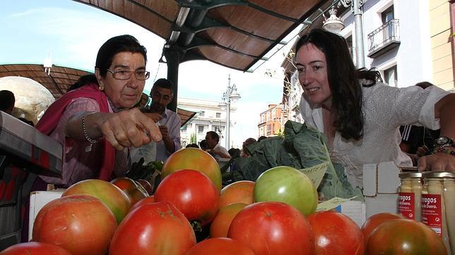 La economía verde, una oportunidad de empleo en España
