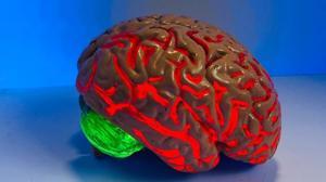 El entrenamiento del cerebro que enseña a manejar la ansiedad