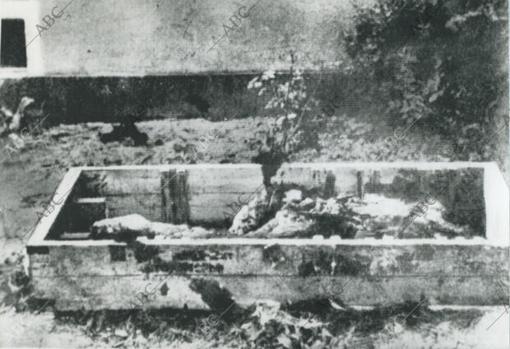 Fotografía hecha por un fotógrafo soviético en la que están, al parecer, los restos de Hitler