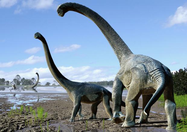 Recreación del Savannasaurus elliottorum