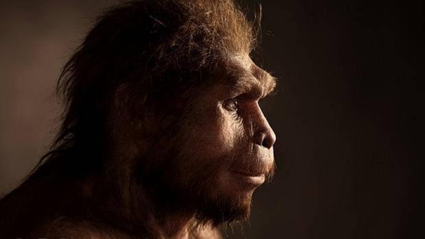 El Homo erectus, un «buen salvaje» a pesar de ser cazador