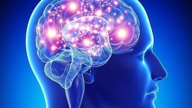 Las ondas del cerebro que desvelan que estás siendo egoísta