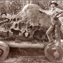 Después de acabar con la mudanza de Tomanowos, Hughes construyó una cabaña alrededor del meteorito, anunció que lo había encontrado en su propiedad y comenzó a cobrar veinticinco centavos por verlo.