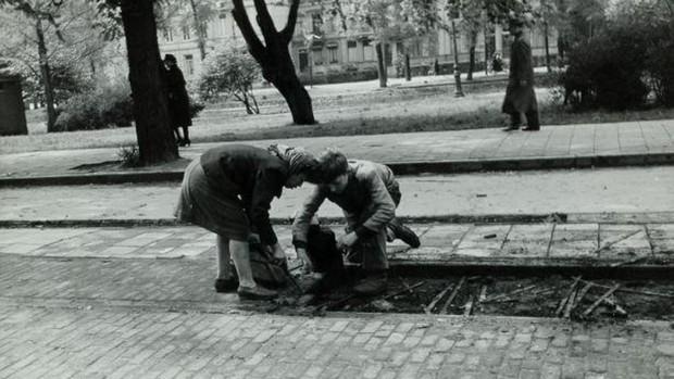 Niños neerlandeses recogiendo madera de una antigua vía férrea para usarla como leña (mayo de 1945)