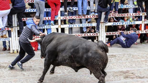Carnaval del Toro en Ciudad Rodrigo