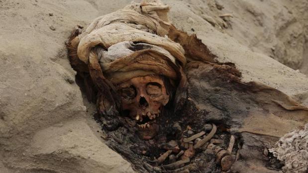 Fotografía cedida por la Agencia Andina que muestra esqueletos de 364 niños ejecutados en un lapso de unos 100 o 150 años