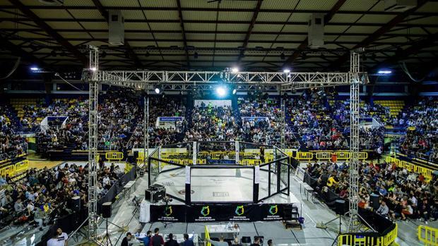 Las MMA impulsan cada vez a más aficionados a llenar los recintos