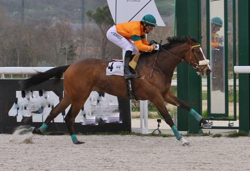 Briacero won the Premio Mil Azul-Cría Nacional