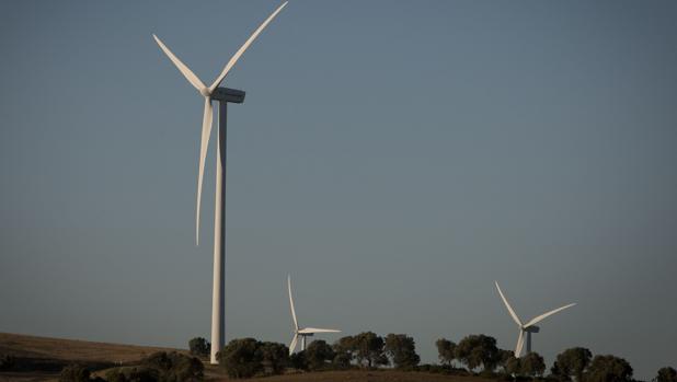 Parque eólico en Cádiz
