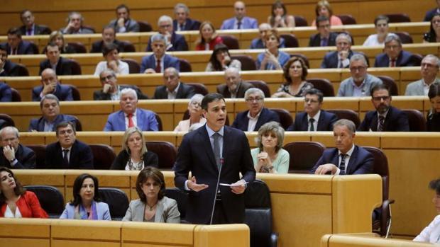 Pedro Sánchez, en el Senado