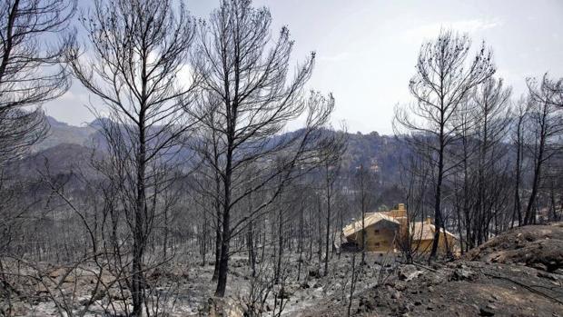 Una de las viviendas afectadas en el término de Gandia
