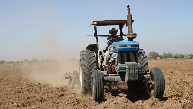 Un hombre trabajando en un tractor