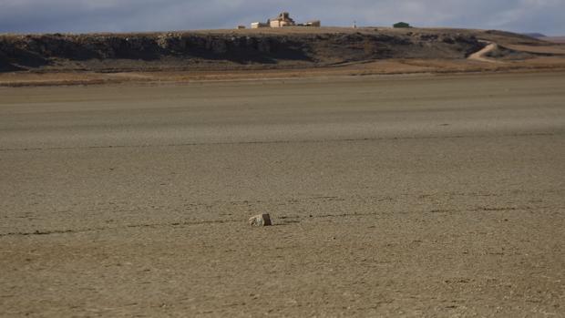 Los paisajes áridos han aumentado aceleradamente en Aragón, sobre todo en los veinte últimos años