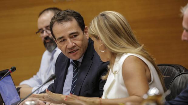 El director de IVF, Manuel Illueca durante su comparecencia en Les Corts