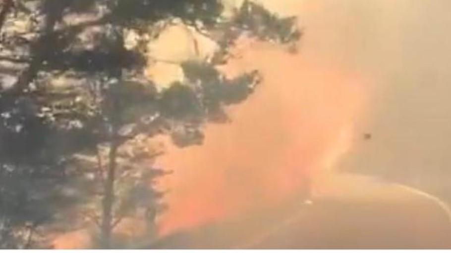 Vídeo: así será el viento donde arde Canarias por horas
