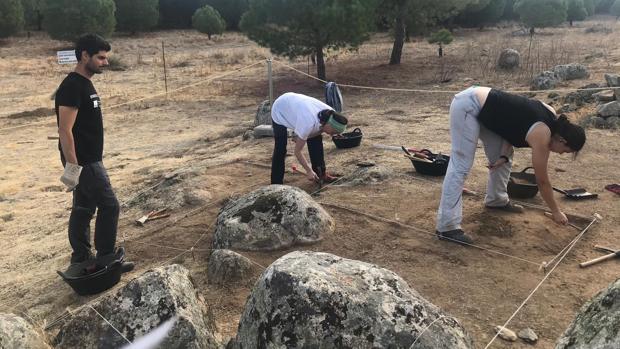 División en cuadrículas de la zona en la que se está excavando