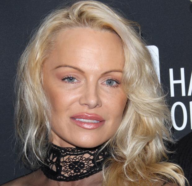 Pelicula porno de pamela anderson Pamela Anderson Irreconocible Tras Pasar Por El Quirofano