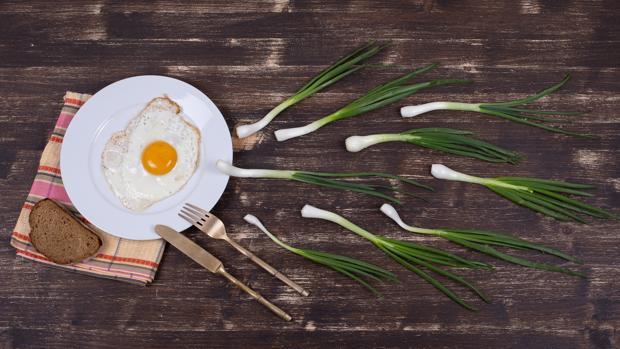 Dieta para mejorar espermatozoides