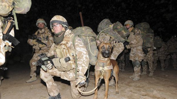 [Imagen: soldados-britanicos-kxiH--620x349@abc.jpg]