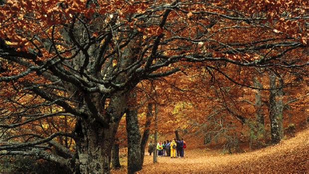 España es el país con más superficie incluida en Natura 2000