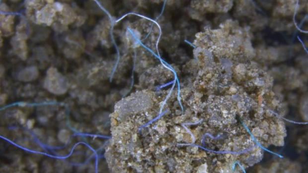 Los microplásticos también están contaminando nuestros suelos
