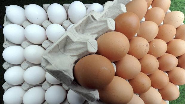 #HuevoChallenge: descubre el buen estado de tus huevos con un sencillo test