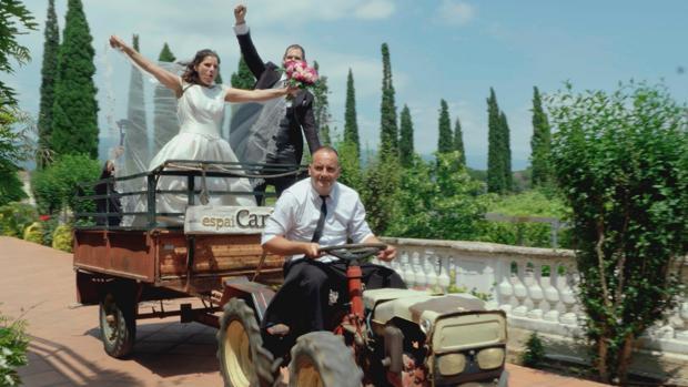 «Cuatro Weddings»