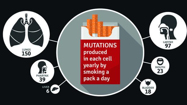 ¿Cuál es el tipo de mutación que causa el cáncer de próstata?