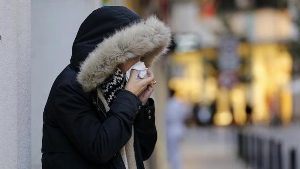 El estudio ha comprobado cómo en ratones el aditivo E-319 provoca una peor respuesta del sistema inmune frente a la gripe