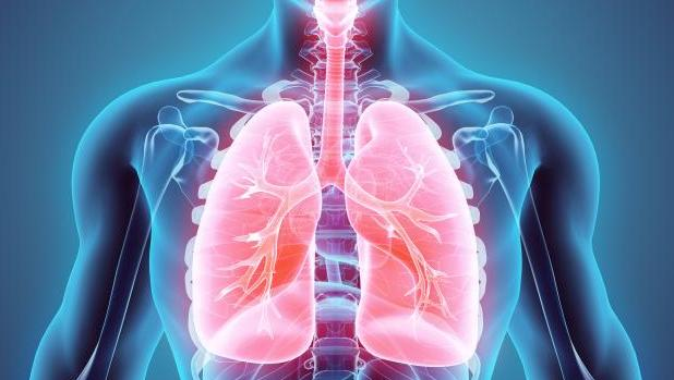 Alimentacion para enfermos de cancer de pulmon
