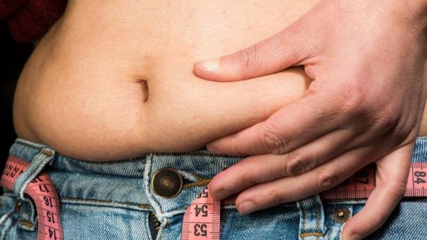 Descubren que una molécula derivada del colesterol aumenta la grasa corporal