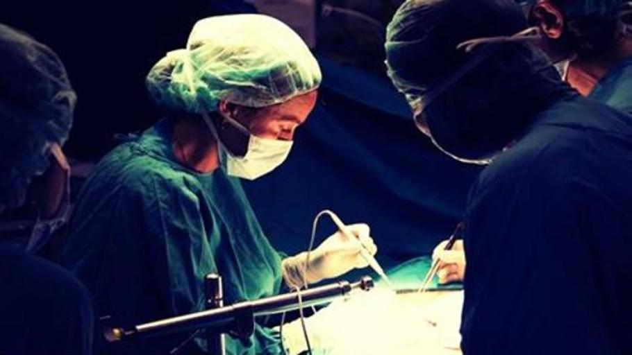 El Ministerio de Sanidad y la OMS acuerdan impulsar la cooperación en materia de donaciones y trasplantes