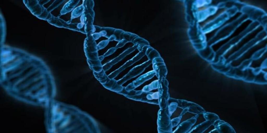 Los genes que reducen el riesgo de alzhéimer