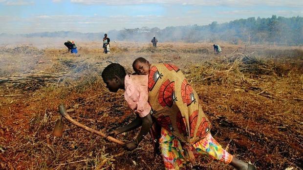 De cara a la próxima temporada, la familias han trabajado para ahorrar para comprar semillas e insumos agrícolas
