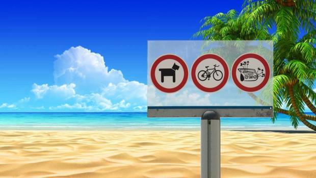 Las playas españolas permiten, en ocasiones, la entrada y el baño de los perros