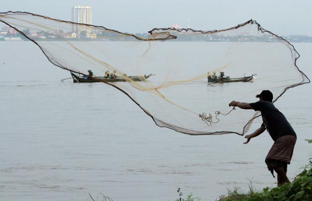 El panga procede del río Mekong en Vietnam, uno de los más contaminados