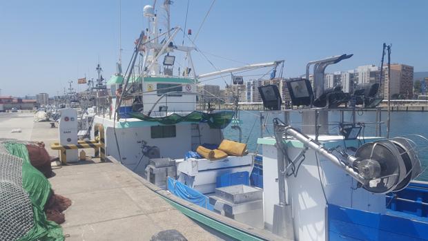 Flota marrada en el puerto de Algeciras